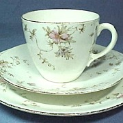 Victorian Trio Cup and Saucer with Plate English 1893