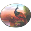 Hand Painted Porcelain Brooch or Pin with Peacock and Sunset Superb