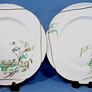 Set of 10 Haviland Limoges Botanical Dinner or Service Plates