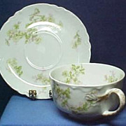 Haviland Limoges Fine China Cup & Saucer