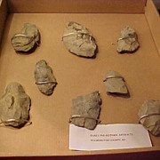8 Washington NY County Stone  Artifacts