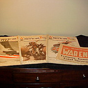Three Decent 1919 American Boy Magazines
