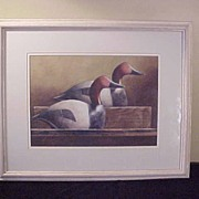 Vintage Canvasback Decoy Watercolor Painting - Signed Weber