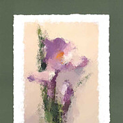 """Irises"" - limited edition, colour lithography s/n."