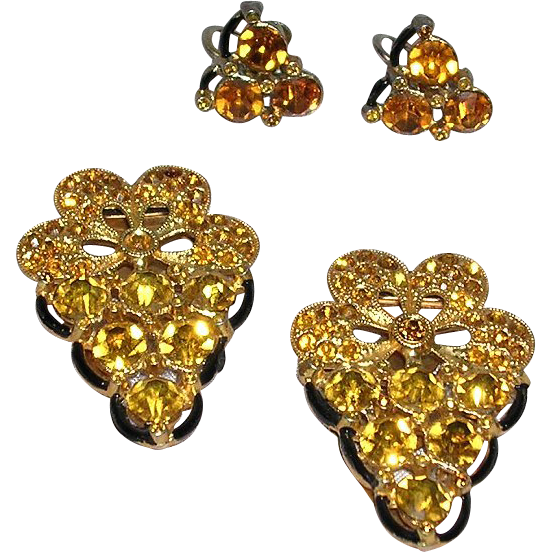 Unusual Dress Clip and Earrings Set