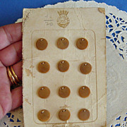 SALE 1920 Era Vegetable Ivory Plus Ultra Carded Buttons