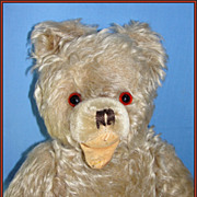 SALE Old German Mohair Teddy Bear - Hermann Zotty, w/ Open Mouth