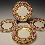 REDUCED BEST Royal Doulton Hand Painted Elegant FLOWER Dinner Plates