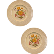 (7) Spode's &quot;Royal Jasmine&quot; ( Mansard ) Dinner Plates