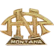 National Rifle Association Pin from &quot;Montana&quot;
