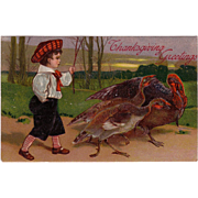 Postcard &quot; Thanksgiving Turkeys &quot;