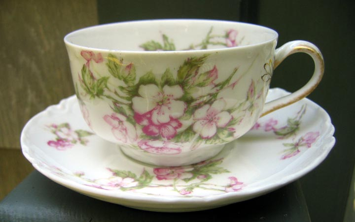 Antique Haviland Limoges Cup & Saucer Schleiger 37 Wild Roses