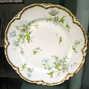 Antique Haviland Limoges Plate  Schleiger 79