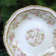 Antique Haviland Limoges Berry / Sauce Bowl Schleiger 844