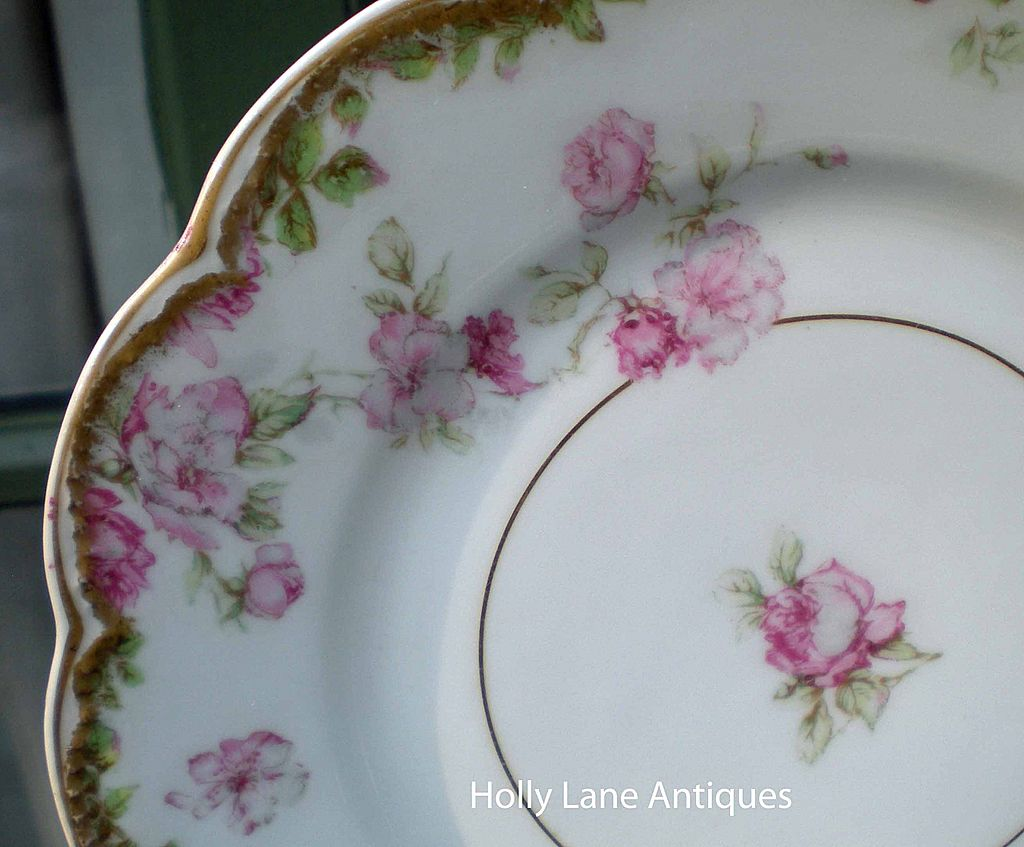 Antique Haviland Limoges Plate Rare Schleiger 39A