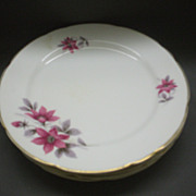 Royal Stafford Evesham Salad Plates Set of 5