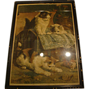 "1900: Original New York Sunday World Insert "" The Playful Kittens "" by Charles Van D"
