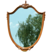 Striking Shield Wood Framed Mirror