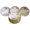 Beautiful Set of Antique Coronet Limoges Porcelain Plates