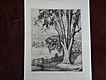 LUIGI LUCIONI (1900-1988) important American printmaker pencil signed etching print