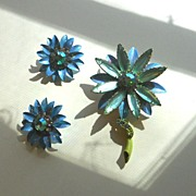 Spring Flowers Brooch and Earrings