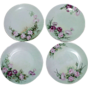 REDUCED Set of 4 Hand Painted Sevres Bavaria Porcelain Decorative Floral Plates