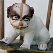 REDUCED G. Heubach Muzzled Bulldog Pup small tray
