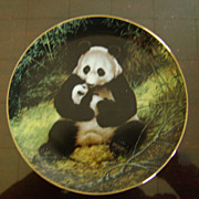 Panda The Last of Their Kind Plate