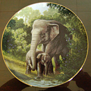 The Asian Elephant The Last of Their Kind The Endangered Species