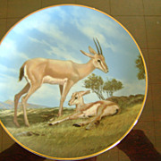 The Slender Horned Gazelle The Last of Their Kind The Endangered Species