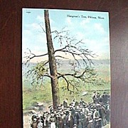 SALE Vintage VERY UNUSUAL Hanging ~ Hangman`s Tree, Helena, Mont. Postcard