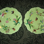 Gorgeous Pair of Minton Butterfly Plates c. 1850