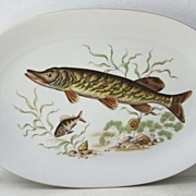 "SALE Bareuther Bavaria German Fish Platter Gold Rim 15 1/2"" Mint"