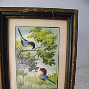 SALE Blue Birds  Framed & Signed Original Watercolor painting