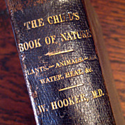 SALE 19th Century Book Titled The Child's Book Of Nature, Published 1878
