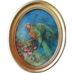 Antique Oil of a Parrot by Diana Coomans  (1861 - 1952)