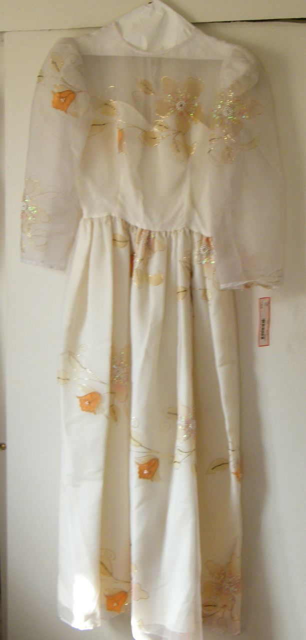 Fairy Princess...Organdy Wedding / Formal Dress..Organdy..Cream...Applique.Long Sleeves..Gathered Skirt..New Condition