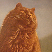 Beautiful Large Reddish Brown Cat Postcard Made in Belgium