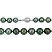 Fine 8.5-11mm Tahitian Pearls, Diamond Set Gold Clasp - Vintage