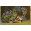 Embossed Cat or Kitten Postcard with Flowers - Birthday Greetings