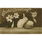 Easter Greetings 1910 Postcard with Bunny Rabbit