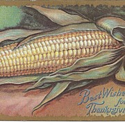 POST CARD, Big Juicy Ear of Corn, Best Wishes for Thanksgiving Day