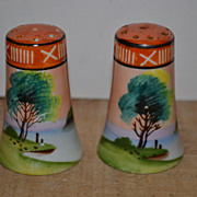 SALE Marked Made in Japan Hand Painted Scenic Salt and Pepper Shakers