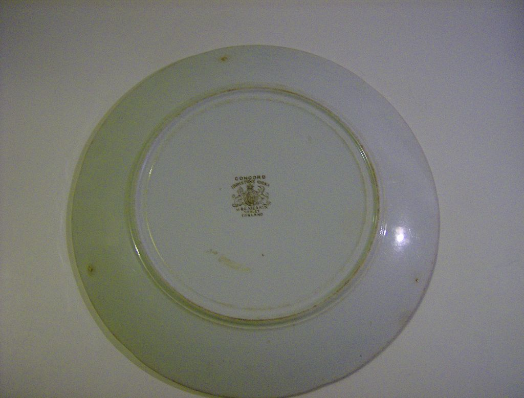 Meakin ironstone china hanley england 1890 s from