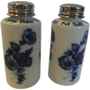 REDUCED Salt & Pepper Shakers By Gerold Porzleian, Tettau Germany