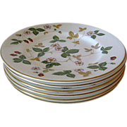 Six  (6) Wedgwood Bread & Butter Plates - Wild Strawberry
