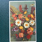 Alfred Mainzer Field Flowers Postcard -Unused