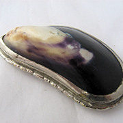 Late 1800s Silver Plated Mussel Shell Snuff Box