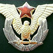 SALE Air Force Pilots Wings Republic of Yugoslavia