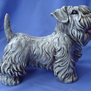 REDUCED Sealyham terrier Italy  8&quot;